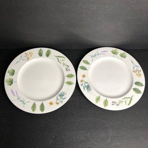 2 Mikasa Natures Harmony Dinner Plates Y4006 Used
